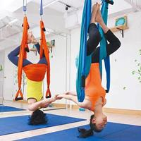 Agptek Aerial Yoga Supplies Swing Inversion Trapeze